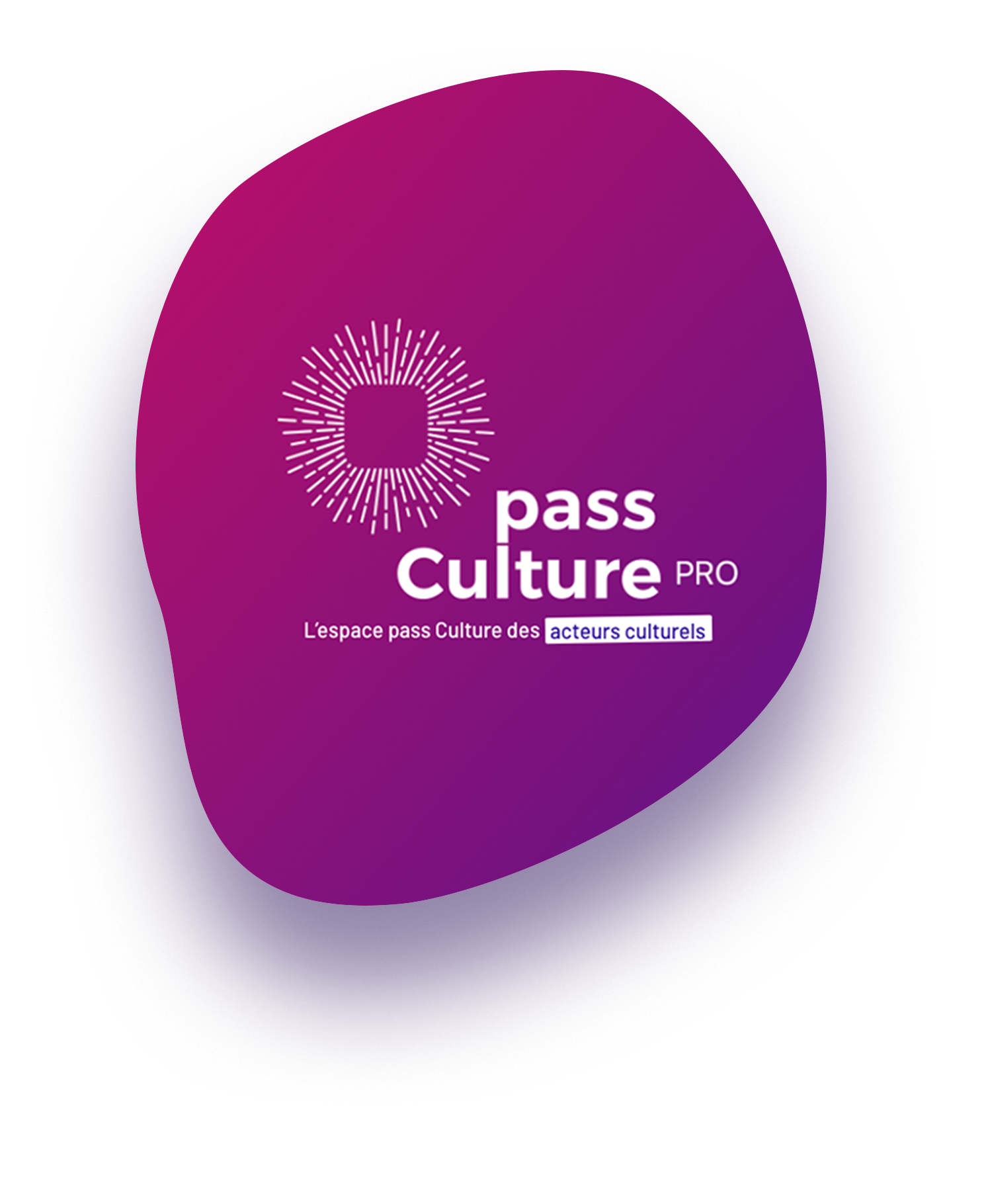 ici se trouve une illustration avec le logo du pass culture de la plateforme professionnelle